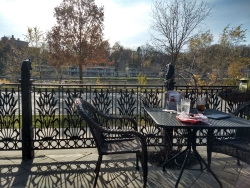 Two weeks later, enjoying lunch outside on a November seventy-degree day.